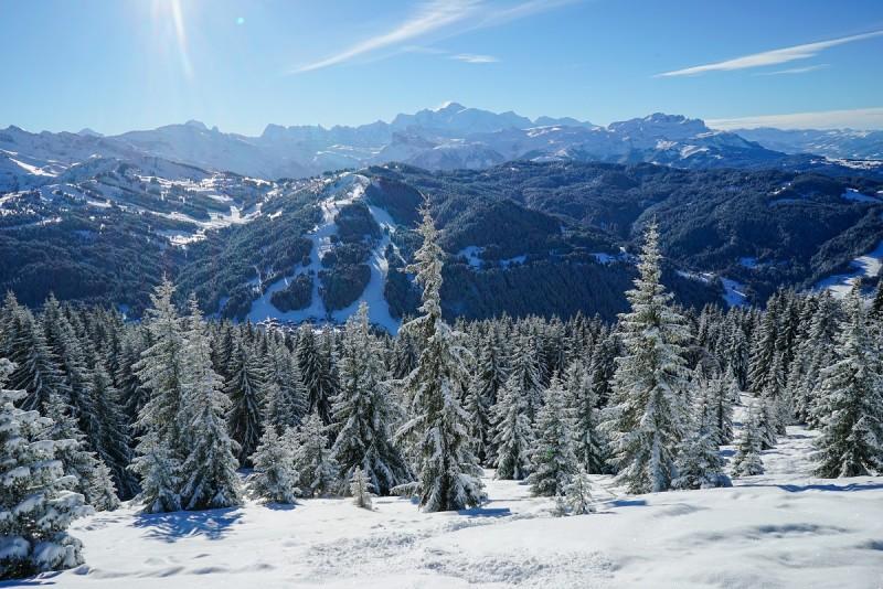 Специальные предложения и пакетные туры зимой