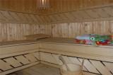 Hotel Alpina - Les Gets - sauna