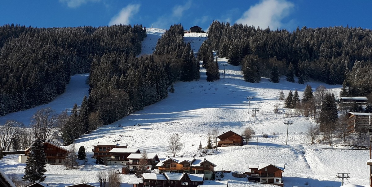 Aulnaie-2-vue-hiver1-location-appartement-chalet-Les-Gets