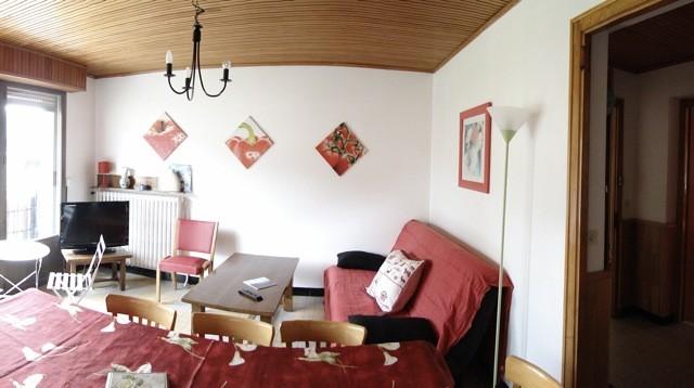 Eau-Vive-2-sejour-location-appartement-chalet-Les-Gets