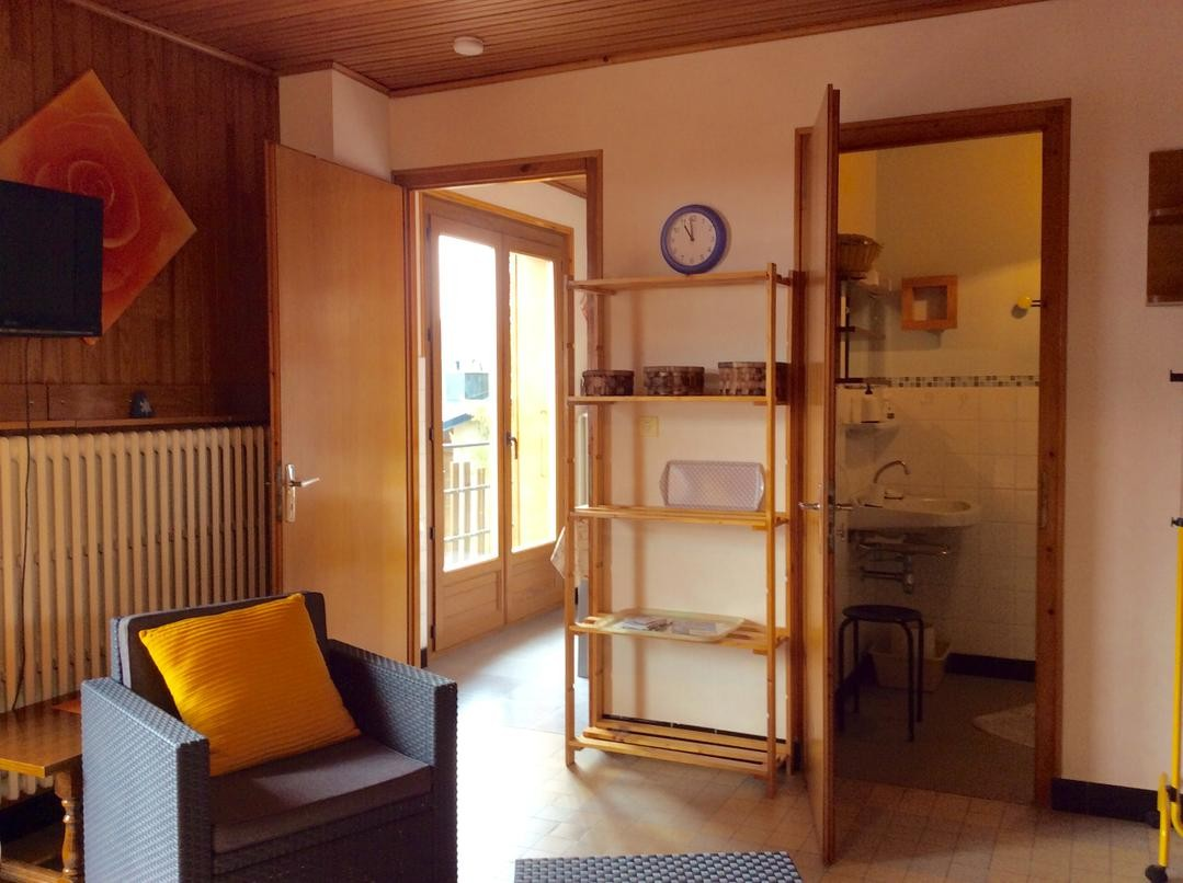 Eau-Vive-4-sejour-location-appartement-chalet-Les-Gets