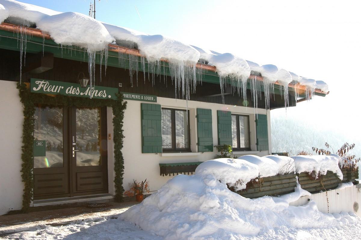 Fleur-des-Alpes-3-Rhododendron-exterieur-hiver4-location-appartement-chalet-Les-Gets