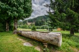 Arolle-Bouquetin-jardin-bassin2-location-appartement-chalet-Les-Gets