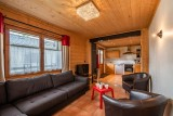Arolle-Bouquetin-salon2-location-appartement-chalet-Les-Gets