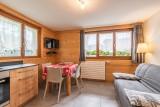 Aulnaie-1-sejour-location-appartement-chalet-Les-Gets
