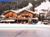 Bleuets-2-vue-patinoire-location-appartement-chalet-Les-Gets