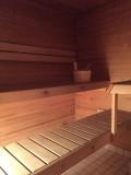 carlines-sauna-308623