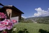 Chez-Rose-jardin-ete-location-appartement-chalet-Les-Gets