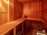 Cognee-sauna-location-appartement-chalet-Les-Gets