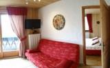 Fleur-des-Alpes-1-Arnica-salon-location-appartement-chalet-Les-Gets