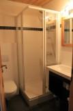 Fleur-des-Alpes-3-Rhododendron-salle-de-bain-location-appartement-chalet-Les-Gets