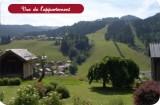 Fleur-des-Alpes-4-Edelweiss-vue-ete-location-appartement-chalet-Les-Gets