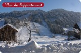 Fleur-des-Alpes-5-Lys-Martagon-vue-hiver-location-appartement-chalet-Les-Gets