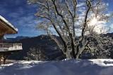 gc-exterior-snowy-246627