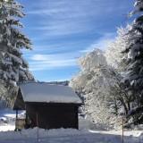 nouvmazot-hiver-2466730