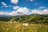 paysage-ete-les-gets-montagne-4320068