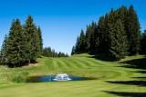 peignee-verticale-t-nalet-golf-gets-7067-3882822