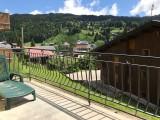 Pinson-des-neiges-2-balcon-vue-location-appartement-chalet-Les-Gets
