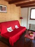 Pinson-des-neiges-2-salon-canape-location-appartement-chalet-Les-Gets