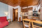 Pressenage-Mesange-sejour-salon-location-appartement-chalet-Les-Gets