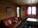 Sapiniere-5-sejour2-location-appartement-chalet-Les-Gets