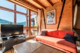 Telemark-salon-television-chalet-appartement-Les-Gets