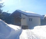 Tete-de-Carres-exterieur-hiver1-location-appartement-chalet-Les-Gets