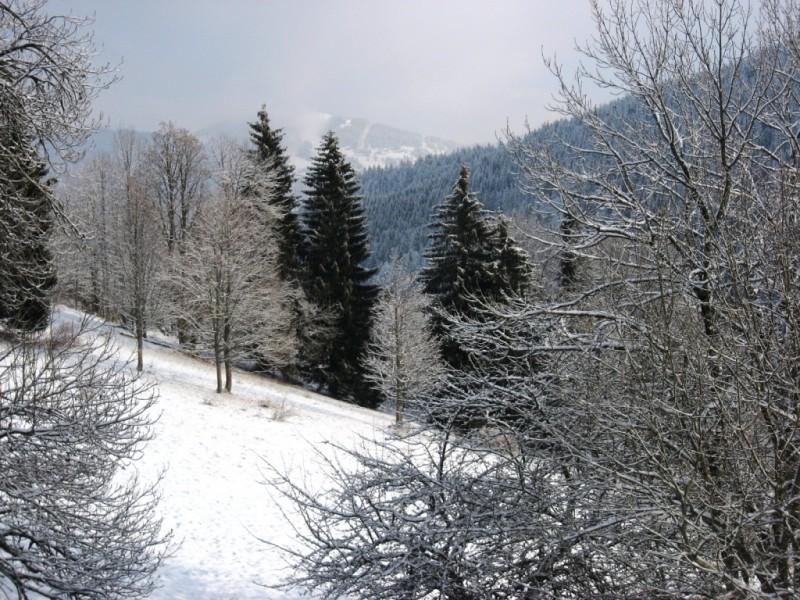 362-exterior-terrace-view-215682
