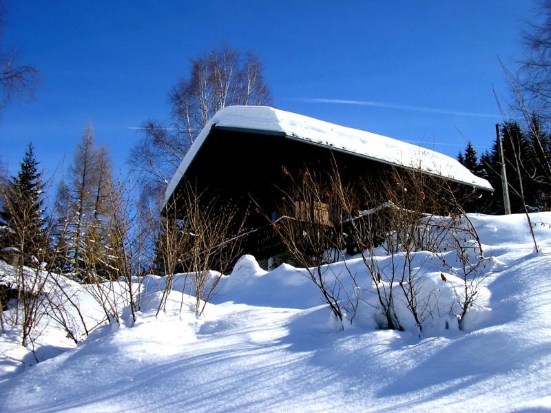 Agapanthe-exterieur-hiver-location-appartement-chalet-Les-Gets