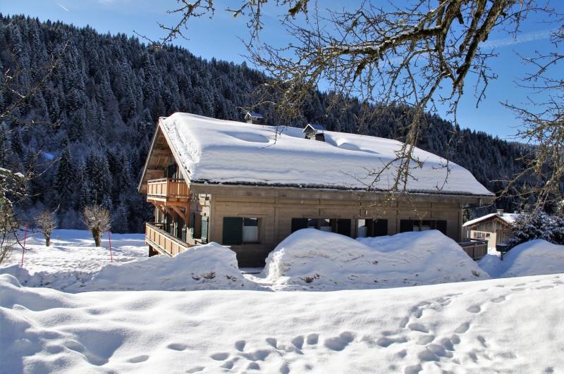 Arolle-Bouquetin-exterieur-hiver-location-appartement-chalet-Les-Gets