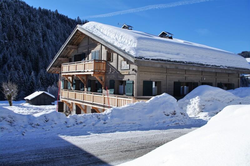Arolle-Bouquetin-exterieur-hiver2-location-appartement-chalet-Les-Gets