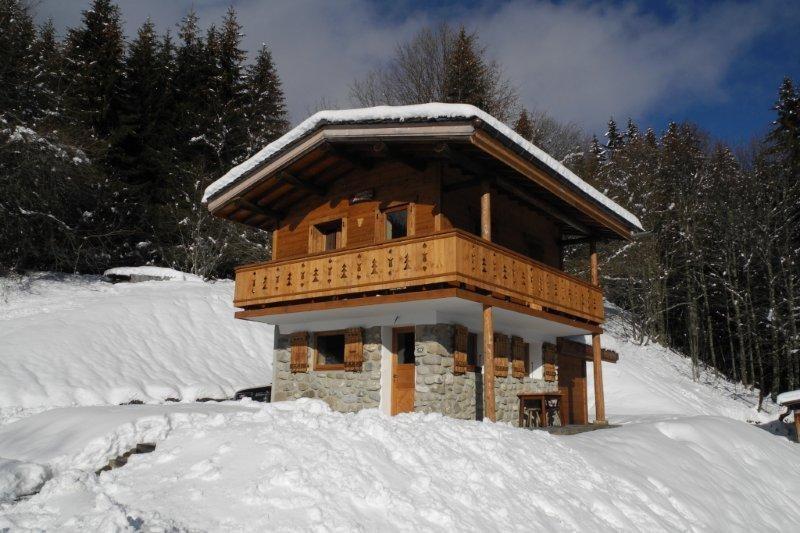 Bel-Horizon-exterieur-hiver1-location-appartement-chalet-Les-Gets