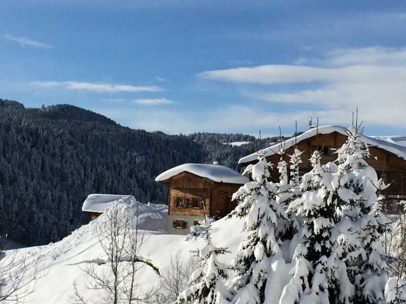 Chez-Rose-hiver-location-appartement-chalet-Les-Gets
