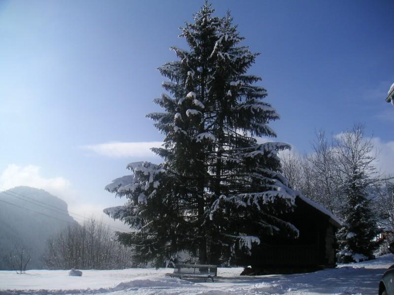 crinaz-ext-hiver-vue-19377