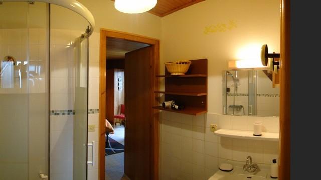 Eau-Vive-4-salle-de-bain-location-appartement-chalet-Les-Gets
