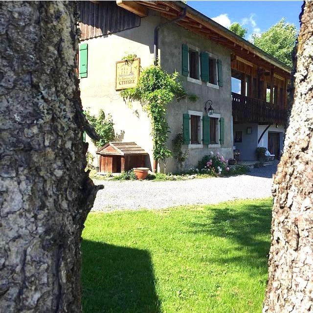 Ferme-du-Crinaz-jardin-ete-location-appartement-chalet-Les-Gets