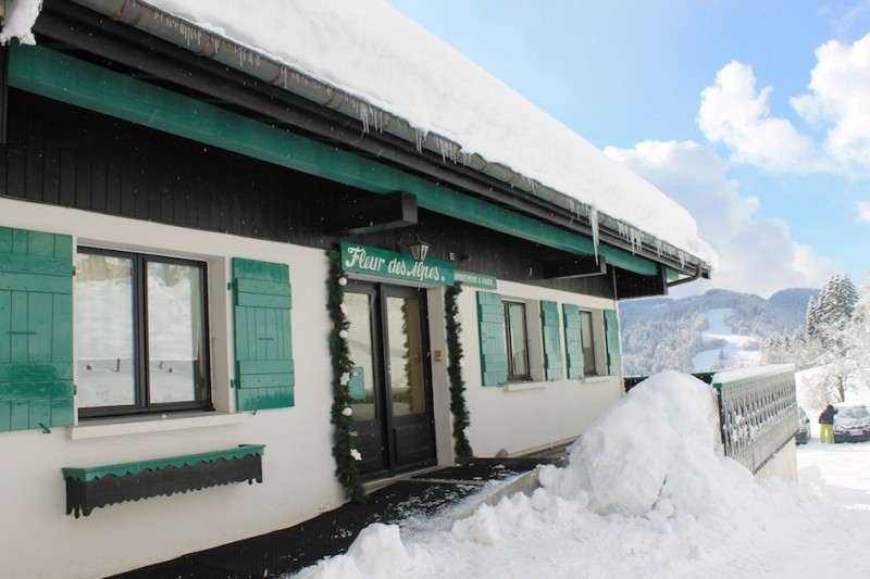 Fleur-des-Alpes-1-Arnica-entree-location-appartement-chalet-Les-Gets