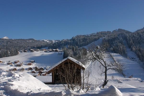Fleur-des-Alpes-1-Arnica-vue-hiver-location-appartement-chalet-Les-Gets