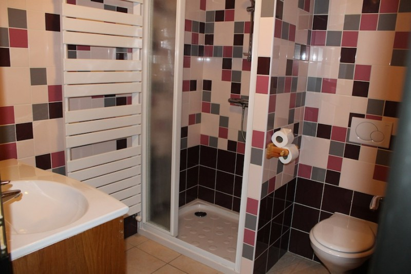 Fleur-des-Alpes-5-Lys-Martagon-salle-de-bain-location-appartement-chalet-Les-Gets