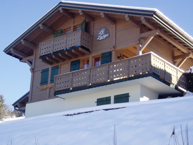 Lapye-exterieur-hiver-location-appartement-chalet-Les-Gets