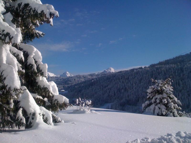 nouvvue-ext-hiver-nyon-2466736