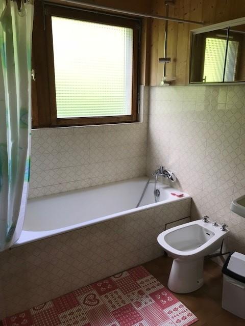Pinson-des-neiges-2-salle-de-bain-location-appartement-chalet-Les-Gets