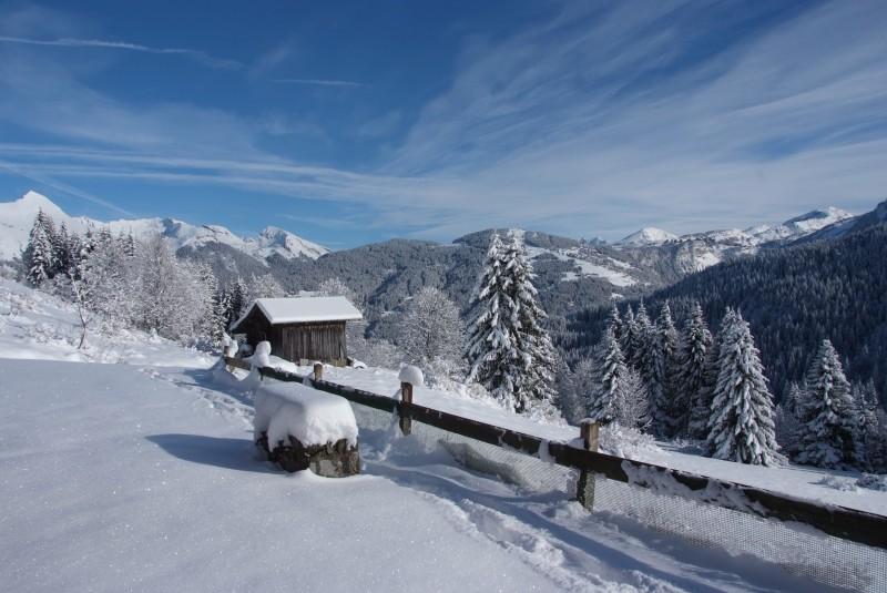 Ramus-Reine-des-Neiges-vue-hiver-location-appartement-chalet-Les-Gets