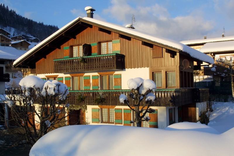 roitelet-ext-hiver2-380