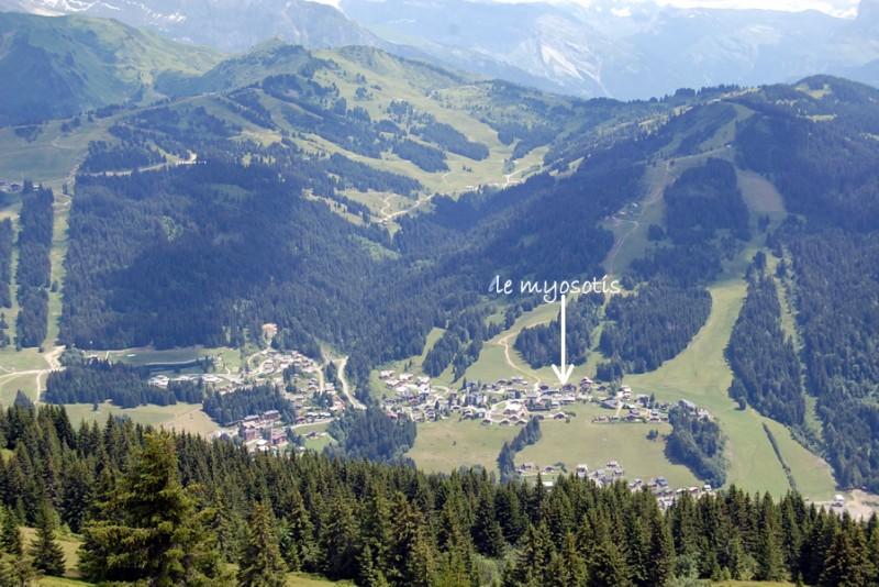 Turche-Myosotis-localisation-location-appartement-chalet-Les-Gets