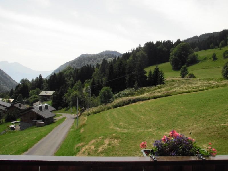 vue-depuis-le-balcon-43167