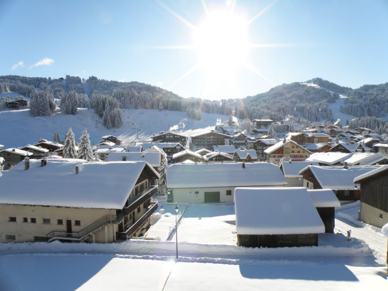 vue-hiver-sapiniere-268840